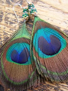 Image result for peacock feathers