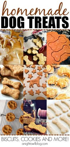 Such a fun list of Homemade Dog Treats! Perfect for the pup in your life! @anightowlblog