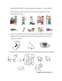 Fise de lucru - gradinita: FISE de evaluare initiala - Grupa mare - DS - Cunoasterea mediului Big Brother Little Sister, Little Sisters, Diy And Crafts, Education, Blog, Android, Google Search, Training, Educational Illustrations