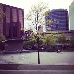 Rosa Parks Circle- Grand Rapids