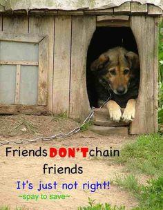 Friends don't chain friends