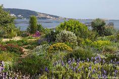 The Garden of Olivier