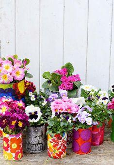 Marimekko tin can planters