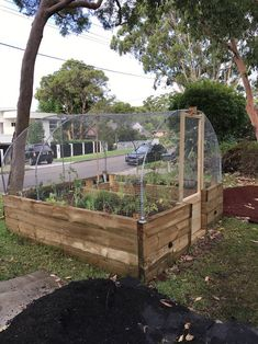My U-shaped raised wicking bed with wire frame cover to allow the insects in but keep the brush turkeys and possums out. Its on a timer so the reservo… - All About Wicking Garden Bed, Wicking Beds, Raised Flower Beds, Raised Garden Beds, Raised Beds, Garden Bed Layout, Pond Liner, Covered Garden, Vegetable Garden Design