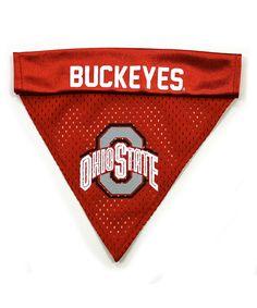 Ohio State Buckeyes Collar Bandanna