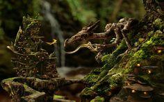 Wooden Dragon and Pixietown wallpaper