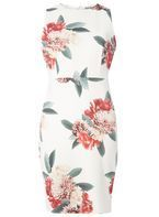 Womens Petite Ivory Floral Pencil Dress- White