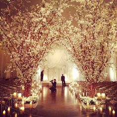 dramatic blossom tree archway idea for orchard