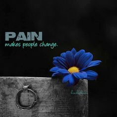 Pain makes your whole life change!    INVISIBLE ILLNESS & CHRONIC PAIN!