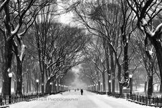 New York City NYC Photography: Central Park in the Snow, Black and White, Metallic, Scenery, Fine Art, 5x7, 8x10, 11x14, 16x20 on Etsy, $4.00