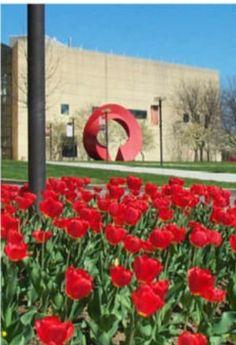Bloomington Indiana Campus