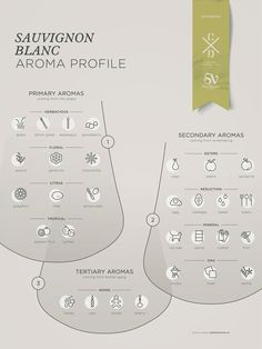 Sauvignon Blanc grape variety wine aroma profile flavors fruit spices Social Vignerons #Wine #Wineeducation