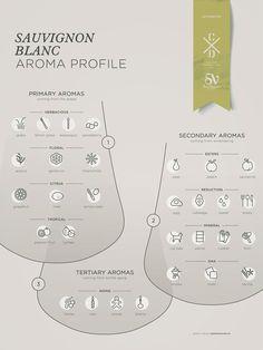 Sauvignon Blanc grape variety wine aroma profile flavors fruit spices Social Vignerons #Wine #Wineeducation