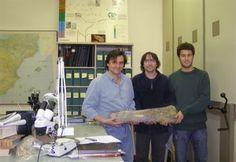 La hipótesis de que la extinción de los dinosaurios pudo ser repentina se refuerza | El Blincacequias