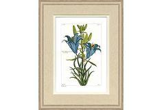 Hand-Colored Teal Botanicals II on OneKingsLane.com