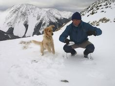 Snow Dogs, Mountain Dogs, Labrador Retriever, Best Friends, Challenges, David, Puppies, Mountains, Animals