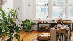 Let them help you unwind   Foliage needn't be an afterthought. Follow these tips to make plants the stars of the room