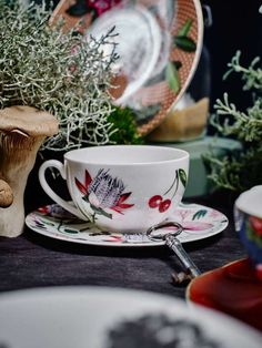 © Gregor Titze, Visual ConcepT & Stylist Sarah Riga Mark Thomas, Riga, Tea Cups, Highlights, Stylists, Concept, Tableware, White Rabbits, Cup And Saucer