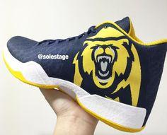 Air Jordan 29 Cal Golden Bears