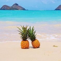 Feel summary with this pineapple beach scene as your phone wallpaper pineapple wallpaper, wallpaper for Cute Wallpapers, Wallpaper Backgrounds, Iphone Wallpaper, Wallpaper Ideas, Pineapple Wallpaper Tumblr, Photo Trop Belle, Summer Wallpaper, Beautiful Beaches, Summer Vibes