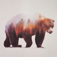 Watercolours painting of forest bear.