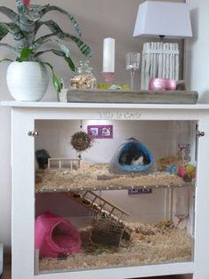 Guinea pig cage from repurposed dresser