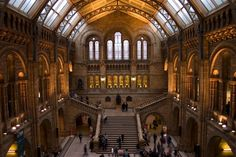 Natural History Museum houses one of the world's largest collections of natural history specimens. Here you can see 70 million specimens in the fields of botany, entomology, mineralogy, paleontology, and zoology. #NaturalHistoryMuseum #travel #London #inspirock #inspirocktravel