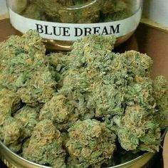 Khalifa Kush is a special blend created by famous rapped Wiz Khalifa who is known for being a bit of a cannabis connoisseur. Buy Edibles Online, Buy Cannabis Online, Buy Weed Online, Medical Cannabis, Cannabis Oil, Cannabis Growing, Indica Strains, Ganja
