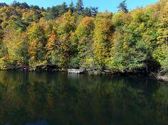 """""""Saklı Cennet""""te Sonbahar Renkleri   Batı Karadeniz Bölgesi'ndeki, """"orman denizi""""ni andıran zengin bitki örtüsü ile """"Saklı cennet"""" olarak bilinen Yedigöller Milli Parkı, sonbaharda da ziyaretçileri büyülüyor."""