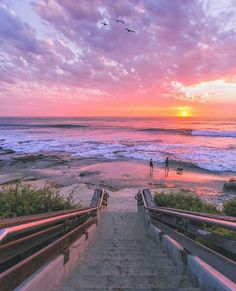 La Jolla - California ✨💜💜💜✨