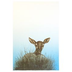 Fawn 36 x 26 cm © limited edition lithography