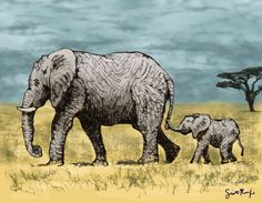 New Scribbler Drawing – Elephant and Baby