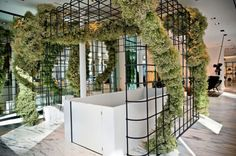 jeff leatham for alexander wang. lots and lots of baby's breath on a grid Retail Interior Design, Retail Store Design, Alexander Wang, Habitat Collectif, Jeff Leatham, New York Soho, Pop Up Shops, Shop Interiors, Office Interiors