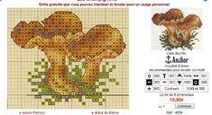 paddenstoel eekhoorntjesbrood