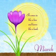 Picture Diary: Ah, March! March Baby, Happy March, March Month, March 2014, December, Seasons Months, Months In A Year, 12 Months, March Pisces