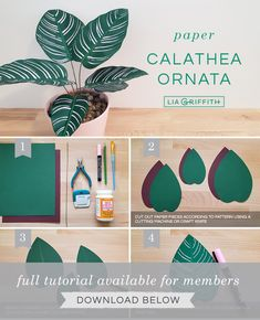 Like plants with printed leaves? Learn how to make your own paper calathea ornata with our plant pattern and step-by-step tutorial. Paper Flowers Diy, Paper Roses, Flower Crafts, Paper Crafts Origami, Diy Paper, Paper Art, Creative Crafts, Diy And Crafts, Dollhouse Miniature Tutorials
