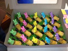 Easter treats Easter Desserts, Easter Treats, Easter 2015, Easter Bunny, Easter Eggs, Holiday Treats, Fruit Salad, Bunny Rabbit, Cookie Decorating