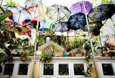 Create a DIY awning with old umbrellas!