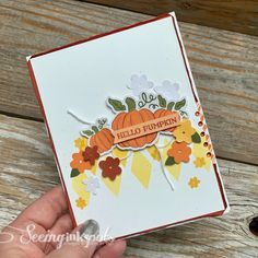 Seeing Ink Spots: Hello Pumpkin, A Paper Pumpkin Thing Handmade Greetings, Greeting Cards Handmade, Stampin Up Paper Pumpkin, Pumpkin Cards, Fall Projects, Fall Cards, Ink Pads, Fall Pumpkins, Diy Cards