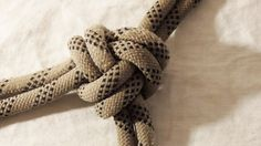 Learn How To Tie A Three Part Crown Knot - WhyKnot