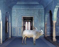 The Gatekeeper, Zanana, Samode Palace, Photographer Karen KMexican Extravaganza Fernand Fonssagrives 1949norr, India Song  w/ the Brahman Bull