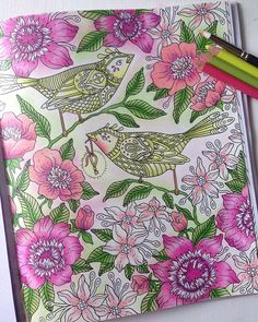 Couleurs girly et printanières pour égayer une soirée pluvieuse ☔️ #girly #pink #bird #flower #spring #sommarnatt #hannakarlzon #coloring #arttherapy #passion #adultcoloringbook #piloute_gribouille