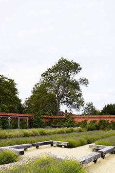 The Walled Garden - Dan Pearson at Folly Farm Vita Sackville West, Farm Gardens, Outdoor Gardens, Indoor Outdoor, City Gardens, Outdoor Spaces, Gaudi, Modern Landscaping, Garden Landscaping