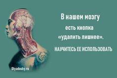 В нашем мозгу есть кнопка «удалить лишнее». Karma