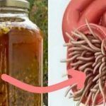 The Most Powerful Natural Antibiotic Ever, It Cures Any Infection In The Body And Kills Parasites!