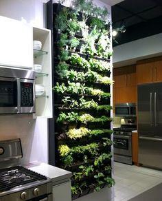 ¿Cómo Colocar un Jardín en la Cocina? by artesydisenos .blogspot. com