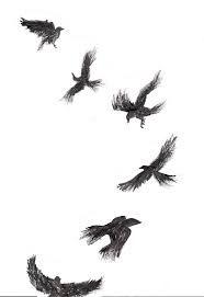 Resultado de imagem para crow tattoo