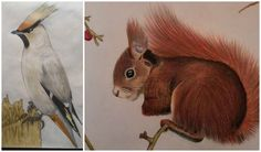 A drawing from Christmas last year (left) and this year (right), there is a difference ;)