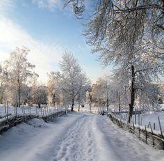 Winter in Åsens By