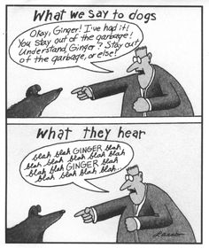 Classic Far Side Cartoons | Last modified: Friday, 17 August 2012, 4:48 PM